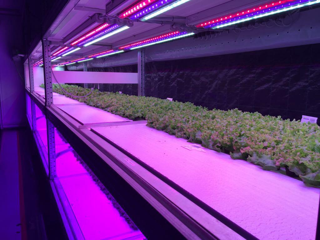 Vertical farming opdrachten en videos