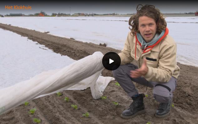 Video: Slateelt op water