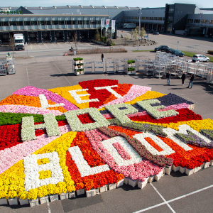 Let-Hope-Bloom-LinkedIn-Photo_Post-1200x1200-px